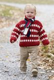Boy in nature. Active boy walks quickly along a nature path in autumn royalty free stock photos