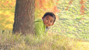 Boy in the nature Stock Image