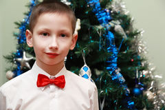 Boy near Christmas tree Stock Image