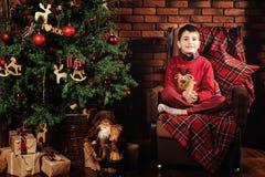 Boy near a Christmas tree. Family celebration of the New Year. Boy near a Christmas tree. Giving gifts. Holiday and fun royalty free stock photo