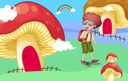 A boy near the giant mushroom houses Stock Image