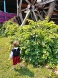 Boy near Paddle Wheel. Boy near water mill Paddle Wheel stock image