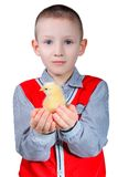 Boy with nestling Stock Photography