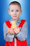 Boy with nestling Stock Photos