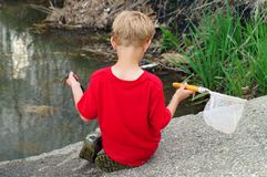 A boy, a net and a frog Stock Photo