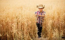 Boy in oat field. A boy walking in an oat field with a hat Stock Photos