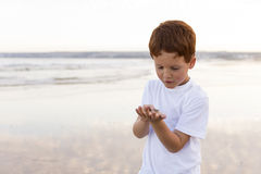 Boy ocean sea beach Royalty Free Stock Images