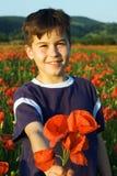 Boy offering a bunch of poppy flowers. Boy standing in a field, offering you a bunch of poppy flowers stock image