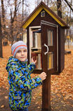 Boy opening a case with books staying outdoors. Boy opening a case with books staing outdoors.  Autumn yellow trees on the background Royalty Free Stock Photography