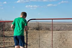 Boy opening farm gate Stock Photography