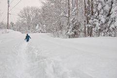 Boy out in a snow storm Royalty Free Stock Image