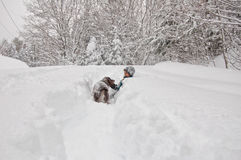 Boy out in a snow storm Royalty Free Stock Photography