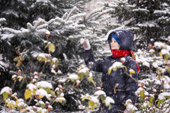 Boy outdoors in the winter Stock Photography