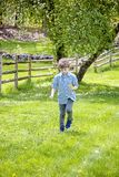 Boy outside picking flowers. Happy five year old boy standing in green grass outside picking yellow dandelions stock photography