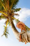 Boy on palm tree Stock Photo