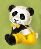 Boy Panda Stock Images
