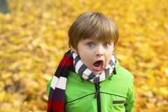 Boy in park in the fall. Portrait of a boy in a park in the fall looking surprised Royalty Free Stock Photo