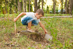 Boy in the park Royalty Free Stock Images