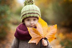 Boy in a park with leave Stock Image