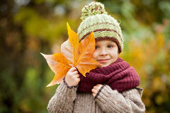 Boy in a park with leave Stock Images