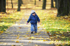 Boy in park Royalty Free Stock Image