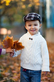 Boy in a park, standing next to a fence. Holding leaves Stock Image