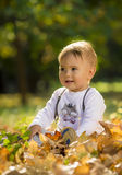 Boy in park Royalty Free Stock Photos