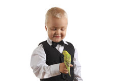 Boy and parrot Stock Photography