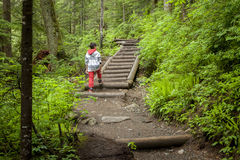 Boy on path in woods. Royalty Free Stock Photography
