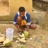 Boy peeling of a coconut Stock Photo