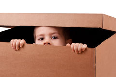 Boy peeping Royalty Free Stock Photos