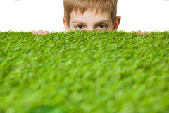 Boy peeping out through green grass. Portrait of a boy peeping out through fresh spring green grass stock images