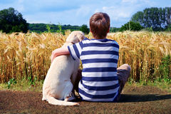 Boy with pet dog. Rear view of boy cuddling pet dog, corn field in background Royalty Free Stock Image