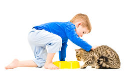 Boy petting a cat Stock Photo