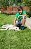 Boy petting his young labrador retriever dog Stock Photo