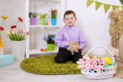 Boy petting a rabbit Stock Image