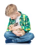 Boy petting a rabbit. Isolated on white background royalty free stock images