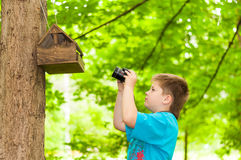 Boy photographing a bird feeder Stock Photo