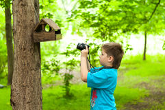 Boy photographing a bird feeder Royalty Free Stock Images