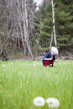 Boy picking dandelions Stock Image