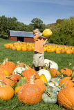 Boy Picking Out a Pumpkin Royalty Free Stock Photography