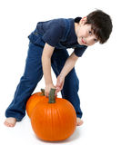 Boy Picking Pumpkins Stock Image