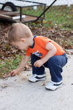 Boy Picking up leaves. Two year old toddler boy picking up acorns, exploring the outdoors in fall Stock Photo