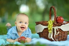 Boy  at the picnic Royalty Free Stock Images