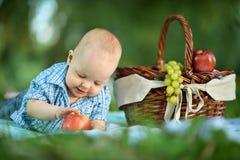 Boy  at the picnic Royalty Free Stock Photography