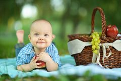 Boy  at the picnic Stock Image