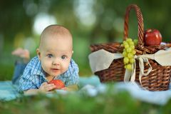 Boy  at the picnic Royalty Free Stock Photography