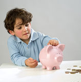 Boy piggy bank Stock Image