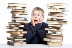 The boy and a pile of books Stock Image