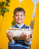 Boy with pile of firewood Royalty Free Stock Photography